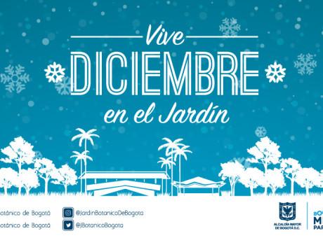 slider-diciembre-18