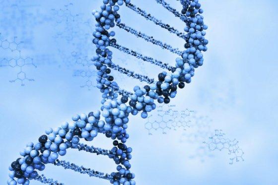Genoma, foto vía IStock