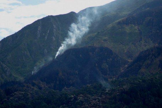 Indendio Forestal, foto vía El Espectador