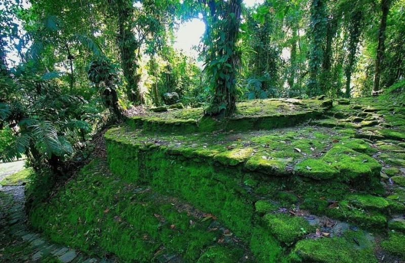Parque Nacional-Natural-Caribe CN