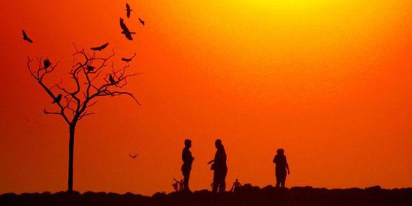 La temperatura de la Tierra es actualmente 1 grado centígrado más alta que a comienzos del siglo XX, cerca del umbral crítico, foto ví Oscar Berna El Tiempo