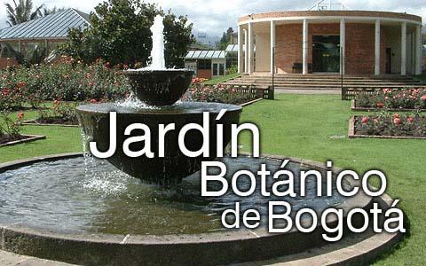 Club de ciencias al jard n bot nico de bogot un plan de for Jardin botanico bogota nocturno 2016