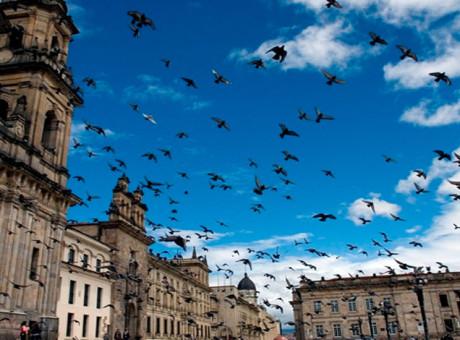 sitios Bogotá turistas conocer lugares recomendados visitar lo mejor