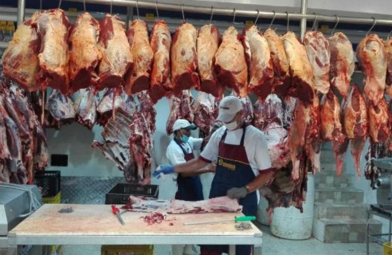 carne estado
