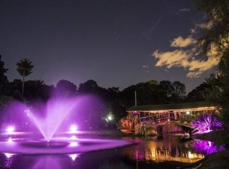 Jardín de Noche - Jardín Botánico de Noche, foto vía Pulzo - Radio Universitaria URepublicanaRadio