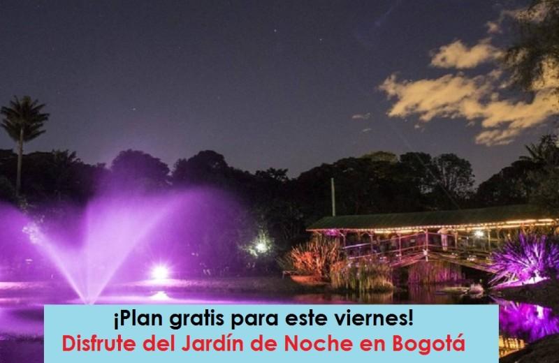 Jardín de noche Jardín-Botánico-de-Noche-foto-vía-Pulzo-Radio-Universitaria-URepublicanaRadio-800x520