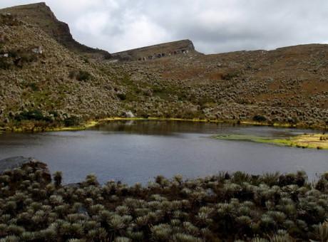 Parque Natural Sumapaz Los mejores lugares naturales para visitar en Bogotá foto vía Sandra Urrea - Parques Nacionales de Colombia