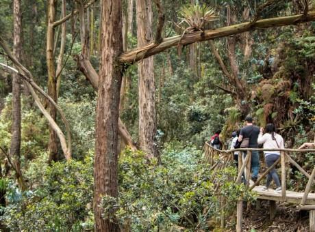 Quebrada las Delicias - los mejores lugares naturales para visitar en Bogotá - radio universitario urepublicanaradio - foto vía web culturarecreacionydeporte
