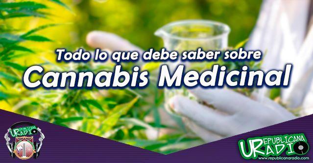 Todo lo que debe sobre el Cannabis Medicinal radio universitaria urepublicanaradio Corporación Universitaria Republicana